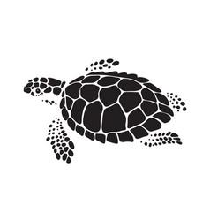 Graphic sea turtle vector