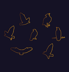 Hawks birds golden silhouettes with different vector