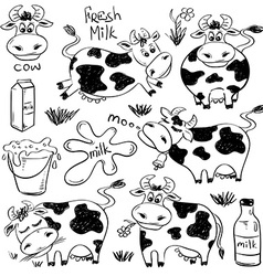 Set Of Isolated Funny Cow Icons vector