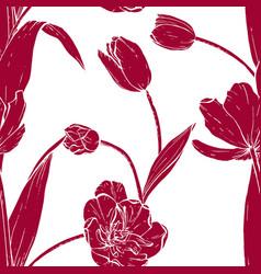 tulip bouquet hand drawn vector image