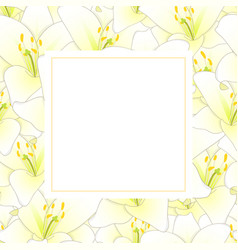 White lily flower banner card vector