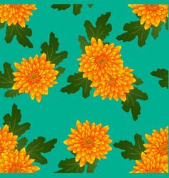 Yellow chrysanthemum on green teal background vector