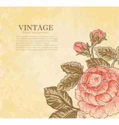 vintage flower on grunge background vector image vector image