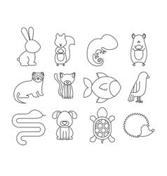 animal pet cartoon design vector image