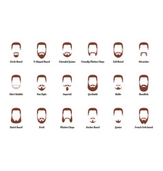man beards and mustaches vector image