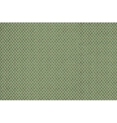 Distress Green Wallpaper vector image vector image