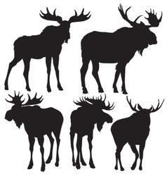 elks silhouette vector image vector image
