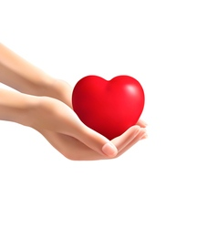 Hands holding a heart vector image vector image