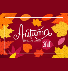 autumn sale calligraphic logo with color fall vector image