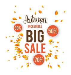 autumn sale card vector image