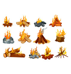 burning fire on woods outdoor camping campfire vector image