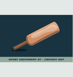 cricket bat icon game equipment professional vector image