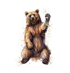 Friendly brown bear sitting and waving a paw from vector