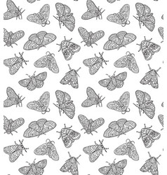 ink butterflies seamless pattern hand drawn vector image