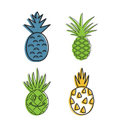 ananas icon set color outline style vector image
