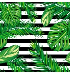Beautiful seamless tropical jungle floral pattern vector image vector image