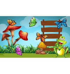 Frog and butterflies at the sign vector image