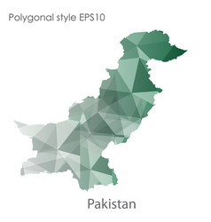 isolated icon pakistan map polygonal geometric vector image