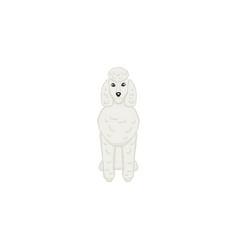 poodlev cartoon dog icon vector image