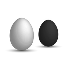 Set a realistic 3D eggs White egg and black egg vector image