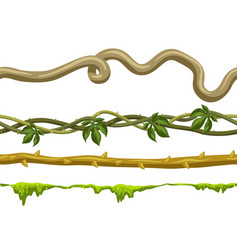 twisted wild lianas branches set vector image