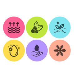 Vitamin e water care and evaporation icons set vector