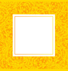 Yellow marigold banner card vector