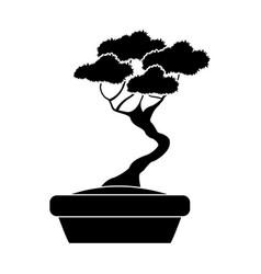 pot black tree silhouette decorative ornate vector image