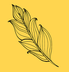 hand drawn doodle zentangle feather isolated from vector image vector image