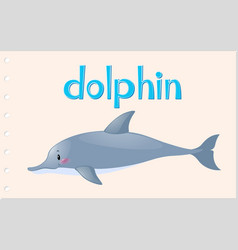 animal wordcard for wild dolphin vector image