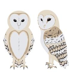 Cartoon barn owl vector