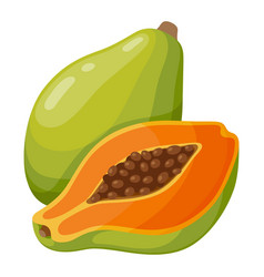 Papaya fruit icon tasty fresh tropical dessert vector