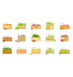 Set of wooden boxes with veggies and fruits vector