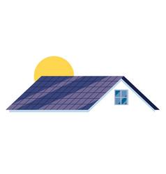 solar rosymbol vector image