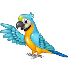 Cartoon funny macaw presenting isolated vector