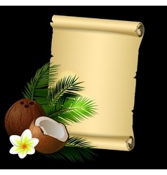 Coconut tropical nut fruit vector