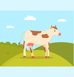 Cow walking on field farming animal cattle vector