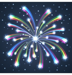 firework colorful one vector image