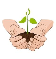 Growing plant in handful soil in hands Comic vector image