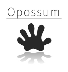 Opossum animal track vector