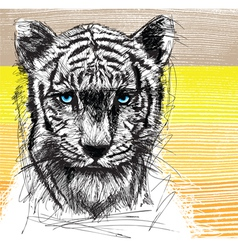 Hand draw sketch of white Tiger vector image
