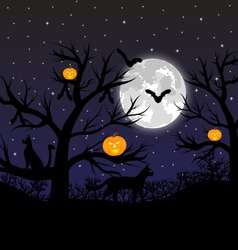 Forest with pumpkins bats and cats vector image vector image