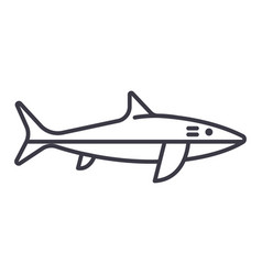 shark line icon sign on vector image vector image