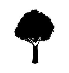 black oak tree silhouette nature plant image vector image vector image