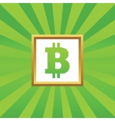 Bitcoin picture icon vector image