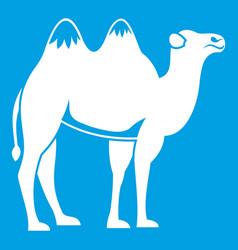 Camel icon white vector