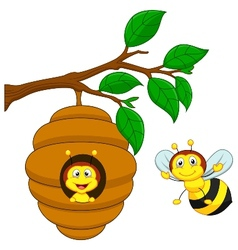 Cartoon a honey bee and comb vector image