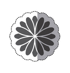contour flower with petals icon vector image