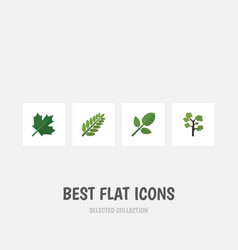 flat icon natural set of leaves foliage garden vector image