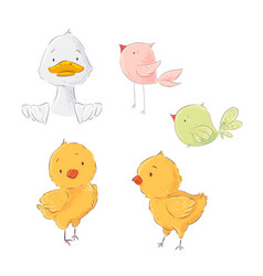 set cute poultry chickens and ducklings vector image